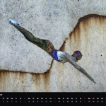 07 - Kalender 2018 RostArt SprungWand